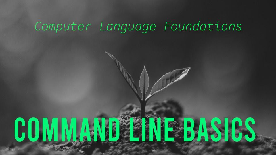 A tiny sprout emerges from the ground, just like you'll emerge more confident with the command line after this workshop.